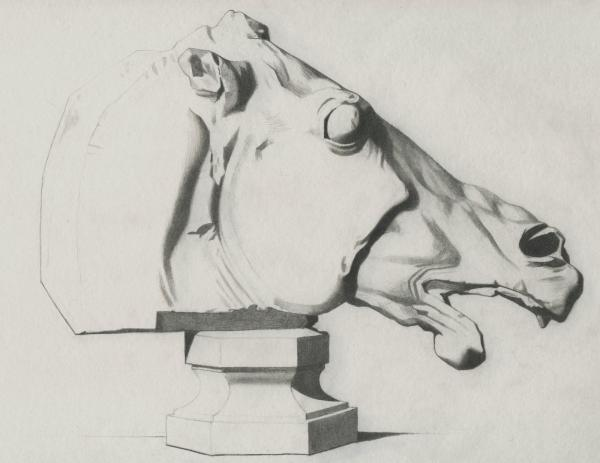 Plate I, 037 - Head of Horse, Parthenon - Attempt 1