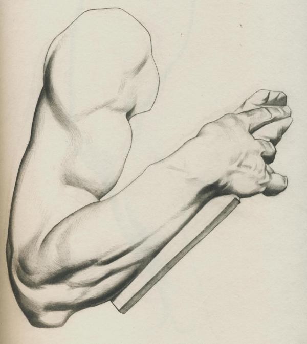 Plate I, 024 - Arm of Moses by Michelangelo - Attempt 2